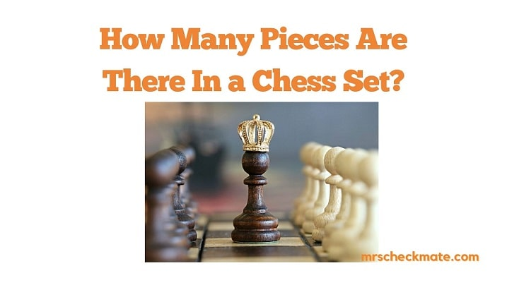 How Many Pieces In a Chess Set? (With Examples)