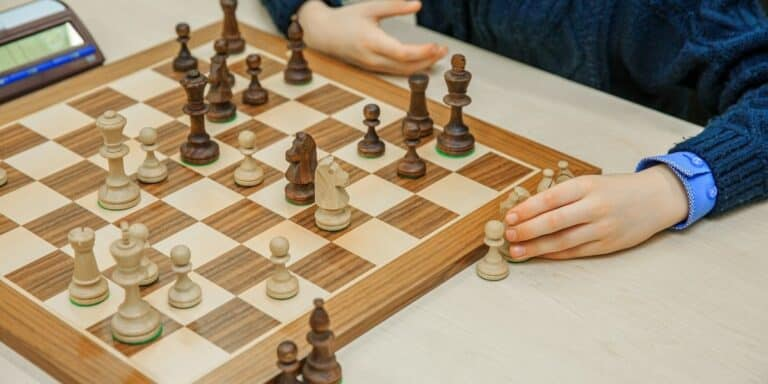 The Best Tournament Chess Boards in 2021 (Top 3 Reviewed)